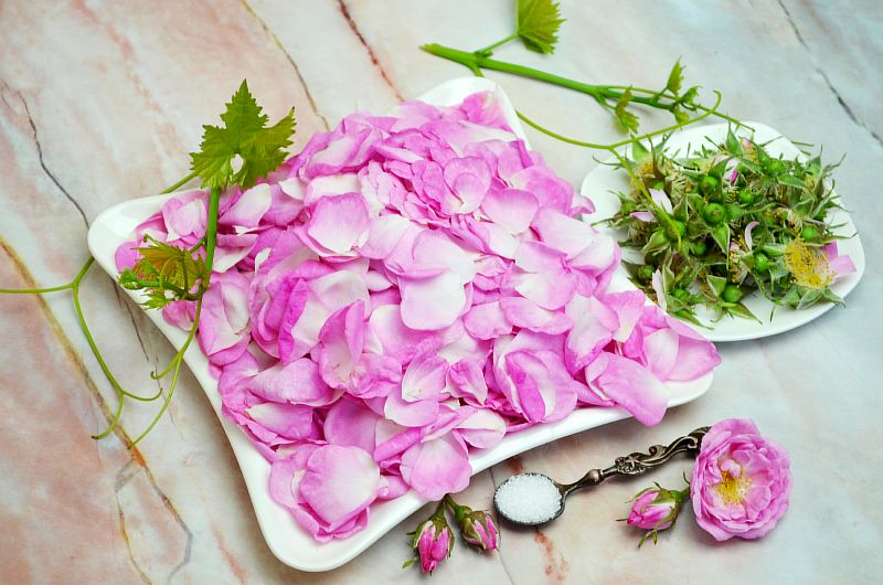 Cорбет из чайной розы